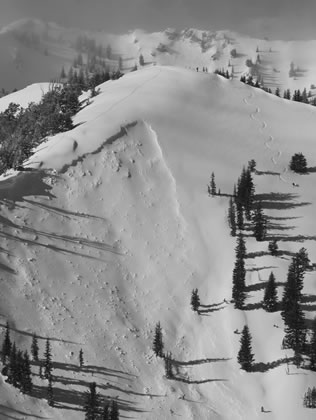 Avalanche with adjacent skier in Silver Fork